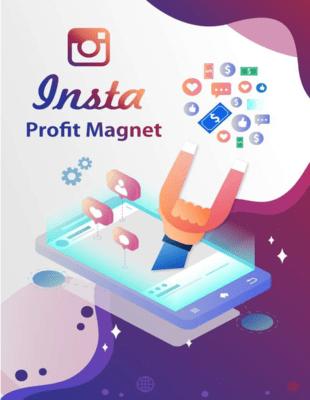 insta profit magnet image